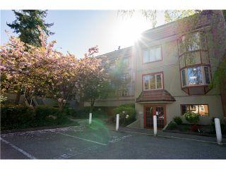 Photo 2: 129 7651 MINORU Blvd: Brighouse South Home for sale ()  : MLS®# V1117669