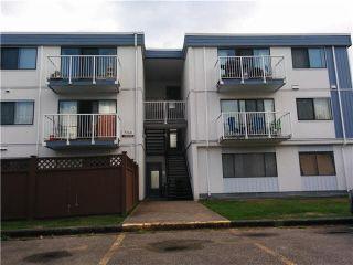 Photo 17: 215 7240 LINDSAY Road in Richmond: Granville Condo for sale : MLS®# R2513353
