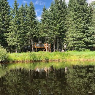 Photo 41: 234133 Range Rd 52 in Rural Rocky View County: Rural Rocky View MD Detached for sale : MLS®# A1149125