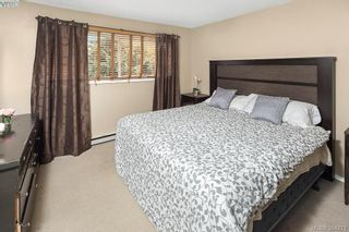 Photo 8: 626 Constance Ave in VICTORIA: Es Esquimalt House for sale (Esquimalt)  : MLS®# 790433
