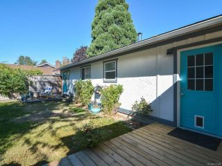 Photo 35: 3797 MEREDITH DRIVE in ROYSTON: CV Courtenay South House for sale (Comox Valley)  : MLS®# 771388