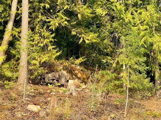 Photo 19: 292 Kault Hill Road, in Salmon Arm: Vacant Land for sale : MLS®# 10236879