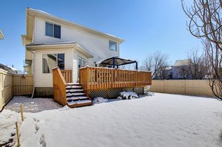 Photo 19: 777 Panorama Hills Drive NW in Calgary: Panorama Hills Detached for sale : MLS®# A1096936