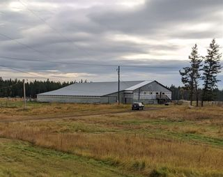 Photo 15: 2130 RADIO RANGE Road in Williams Lake: Williams Lake - Rural North House for sale (Williams Lake (Zone 27))  : MLS®# R2508004