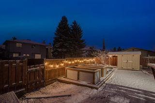 Photo 34: 24 MCKERRELL Crescent SE in Calgary: McKenzie Lake Detached for sale : MLS®# A1092073