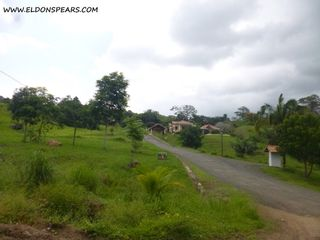 Photo 18: Trinity Hills Valley - Lot for Sale