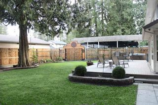Photo 20: 4188 207 STREET in Langley: Brookswood Langley House for sale : MLS®# R2052049