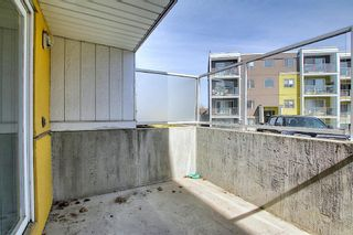 Photo 17: 102 4455A Greenview Drive NE in Calgary: Greenview Apartment for sale : MLS®# A1088042