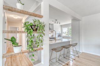 Photo 15: 9104 156 Street NW in Edmonton: Zone 22 House for sale : MLS®# E4254125