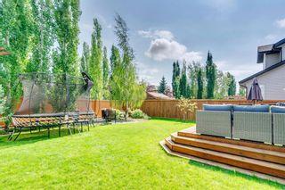 Photo 48: 22 ELGIN ESTATES Grove SE in Calgary: McKenzie Towne Detached for sale : MLS®# A1019563