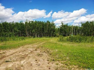 Photo 5: 138 Acres, RM of Meadow Lake #588 in Meadow Lake: Lot/Land for sale (Meadow Lake Rm No.588)  : MLS®# SK860207