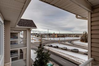 Photo 20: 2407 16320 24 Street SW in Calgary: Bridlewood Apartment for sale : MLS®# A1059487