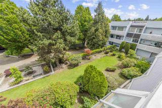 """Photo 8: 320 7431 BLUNDELL Road in Richmond: Brighouse South Condo for sale in """"Canterbury Court"""" : MLS®# R2459218"""