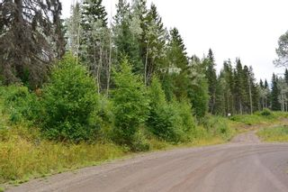 """Photo 5: LOT 13 GRANTHAM Road in Smithers: Smithers - Rural Land for sale in """"Grantham"""" (Smithers And Area (Zone 54))  : MLS®# R2604020"""