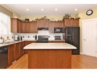 """Photo 6: 7001 202B Street in Langley: Willoughby Heights House for sale in """"JEFFRIES BROOK"""" : MLS®# F1319795"""