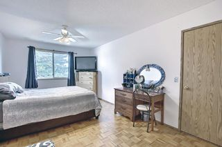 Photo 18: 23 Applecrest Court SE in Calgary: Applewood Park Detached for sale : MLS®# A1079523
