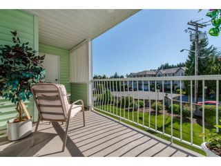 """Photo 19: 116 31850 UNION Street in Abbotsford: Abbotsford West Condo for sale in """"Fernwood Manor"""" : MLS®# R2169437"""
