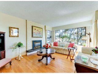 Photo 12: 1061 EWSON Street: White Rock House for sale (South Surrey White Rock)  : MLS®# F1423290