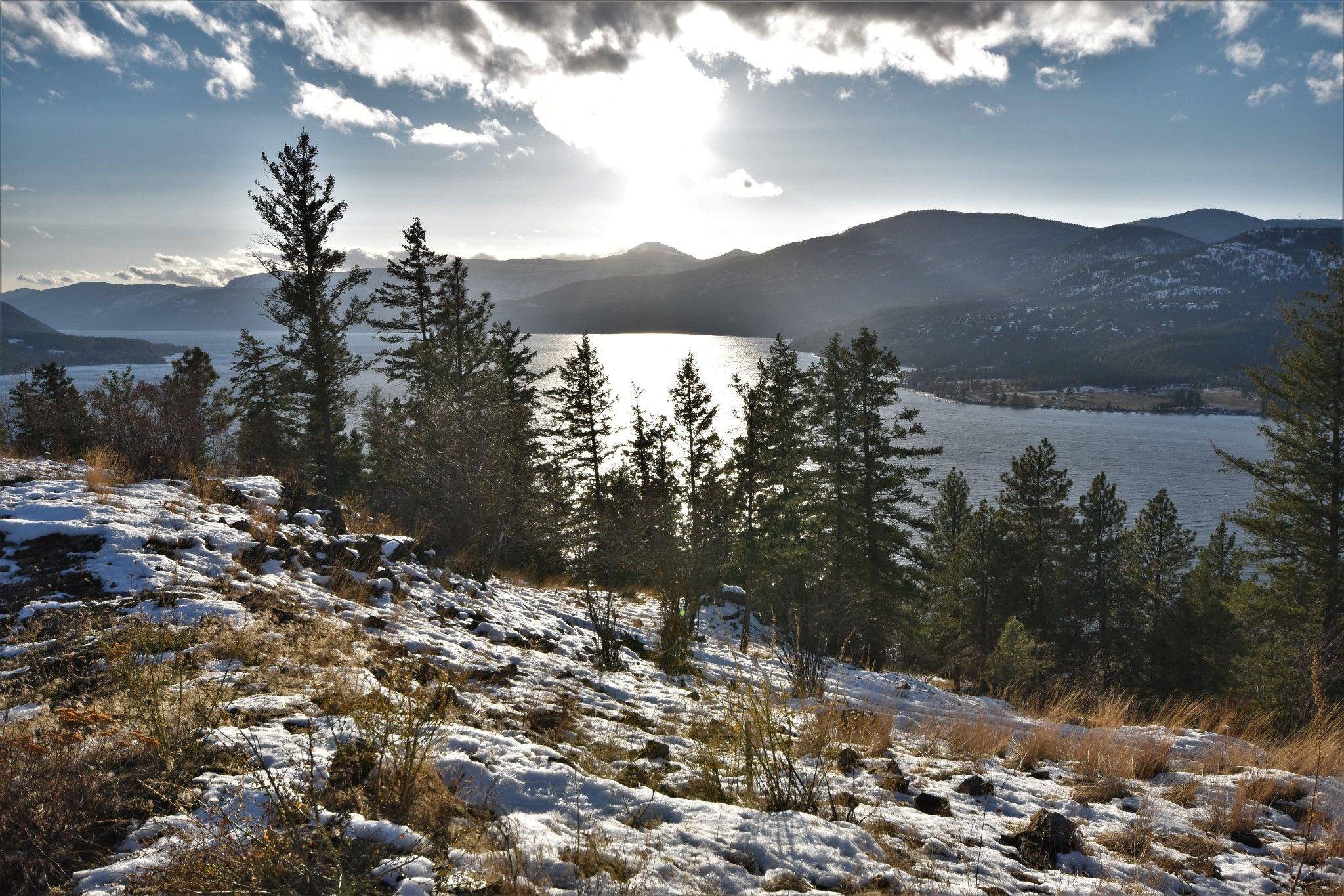 Main Photo: 9034 Tavistock Road in Vernon: Adventure Bay Vacant Land for sale (North Okanagan)  : MLS®# 10218951