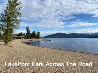 Photo 30: 1039 Scotch Creek Wharf Road: Scotch Creek House for sale (Shuswap Lake)  : MLS®# 10217712