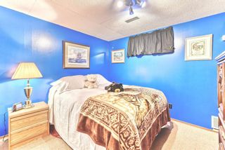 Photo 29: 103 Beddington Way NE in Calgary: Beddington Heights Detached for sale : MLS®# A1099388