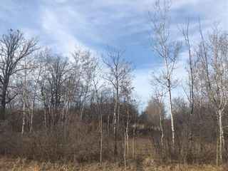 Photo 21: 0 Governor Rd at 94N Road in St Laurent: RM of St Laurent Residential for sale (R19)  : MLS®# 202108065