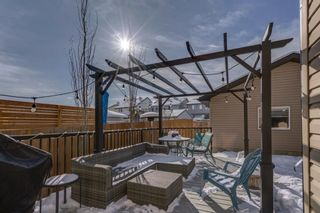 Photo 45: 119 ELGIN MEADOWS Way SE in Calgary: McKenzie Towne Detached for sale : MLS®# A1067731