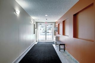 Photo 31: 1302 279 Copperpond Common SE in Calgary: Copperfield Apartment for sale : MLS®# A1146918