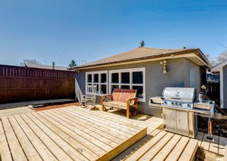 Photo 35: 3042 30A Street SE in Calgary: Dover Detached for sale : MLS®# A1097578