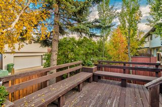Photo 8: 508 Mckinnon Drive NE in Calgary: Mayland Heights Detached for sale : MLS®# A1154496