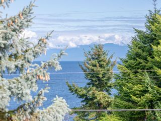 Photo 38: 1383 Reef Rd in : PQ Nanoose House for sale (Parksville/Qualicum)  : MLS®# 856032