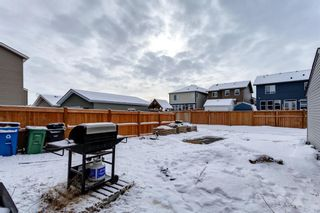 Photo 37: 1610 Legacy Circle SE in Calgary: Legacy Detached for sale : MLS®# A1072527