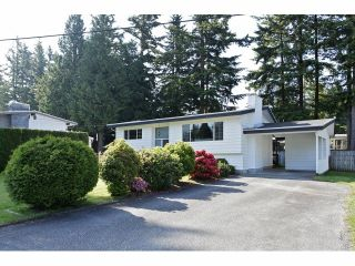 Photo 19: 34304 REDWOOD Avenue in Abbotsford: Central Abbotsford House for sale : MLS®# F1413819