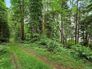 Photo 50: Lot 2 Eagles Dr in : CV Courtenay North Land for sale (Comox Valley)  : MLS®# 869395
