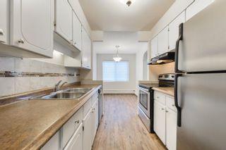 Photo 8: 205 11430 40 Avenue in Edmonton: Zone 16 Condo for sale : MLS®# E4258318