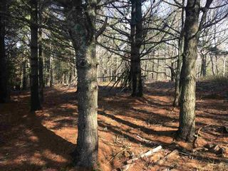 Photo 3: Lot 1A Huey Lake Road in Mount Pleasant: 405-Lunenburg County Vacant Land for sale (South Shore)  : MLS®# 202104629