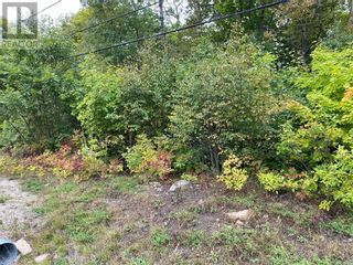 Photo 2: N/A Highway 542 in Mindemoya, Manitoulin Island: Vacant Land for sale : MLS®# 2098500