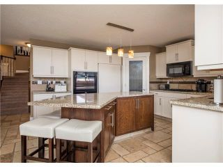 Photo 12: 34 CHAPALA Court SE in Calgary: Chaparral House for sale : MLS®# C4108128