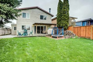 Photo 20: 19014 117A Avenue in Pitt Meadows: Central Meadows House for sale : MLS®# R2255723