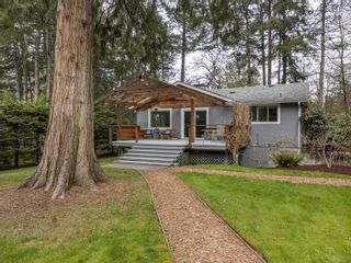 Photo 12: 731 Bradley Dyne Rd in : NS Ardmore House for sale (North Saanich)  : MLS®# 870727