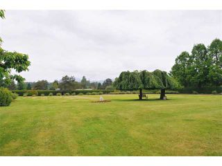 """Photo 9: 21941 127TH Avenue in Maple Ridge: West Central House for sale in """"DAVIDSON AREA"""" : MLS®# V893432"""