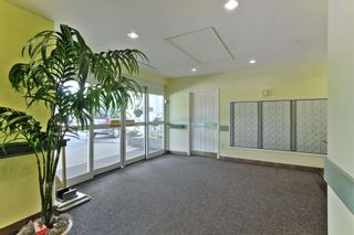 Photo 16: 113 78 MCKENNEY Avenue: St. Albert Condo for sale : MLS®# E4251124