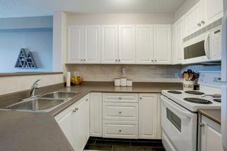 Photo 11: 4421 4975 130 Avenue SE in Calgary: McKenzie Towne Apartment for sale : MLS®# A1020076