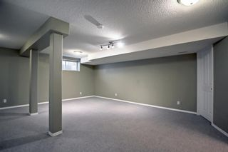 Photo 39: 60 Inverness Drive SE in Calgary: McKenzie Towne Detached for sale : MLS®# A1146418
