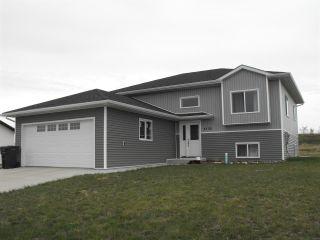 Photo 23: 5102 60 Avenue: Elk Point House for sale : MLS®# E4197855