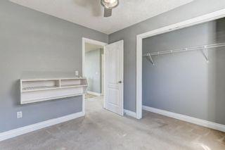 Photo 29: 158 Saddlemont Boulevard NE in Calgary: Saddle Ridge Detached for sale : MLS®# A1145866