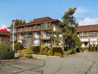 Photo 1: 416 1009 McKenzie Ave in VICTORIA: SE Quadra Condo for sale (Saanich East)  : MLS®# 553135
