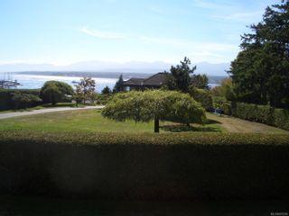 Photo 98: 155 Willow Way in Comox: CV Comox (Town of) House for sale (Comox Valley)  : MLS®# 887289