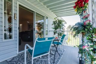 """Photo 16: 250 32691 GARIBALDI Drive in Abbotsford: Abbotsford West Townhouse for sale in """"Carriage Lane"""" : MLS®# R2262736"""