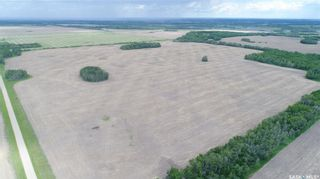 Photo 3: Lockhart Farm in Canwood: Farm for sale (Canwood Rm No. 494)  : MLS®# SK828997